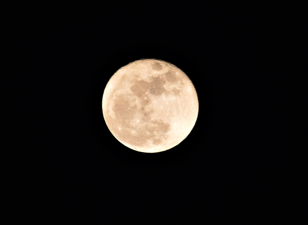 moon4closer