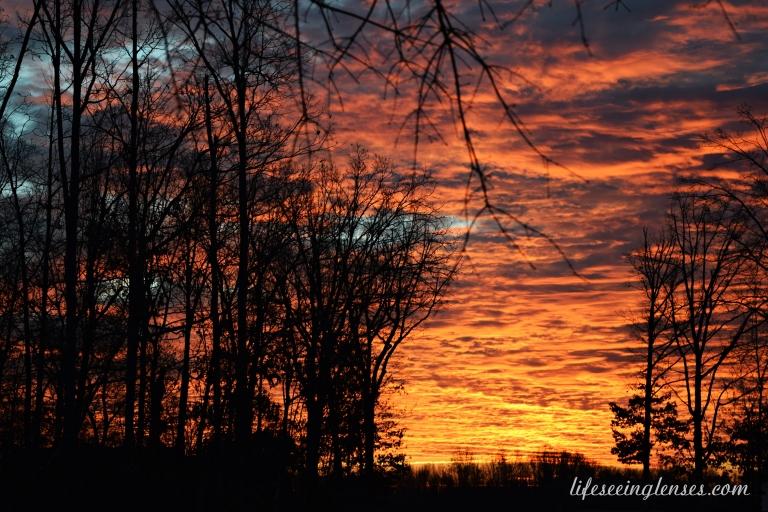 sunrisenewmarked
